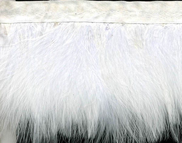 "3"" Feather Fringe-White With White Ribbon"