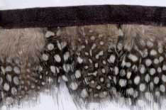 "1.75"" Feather Fringe-Brown White Combo With Black Ribbon"