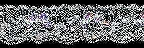 25MM Bead/Sequin Edge Lace-White/White Iridescent