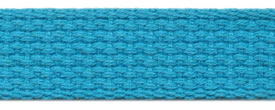 "1"" Cotton Webbing-Turq"