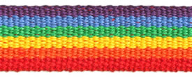 "1"" Cotton Webbing-Rainbow"